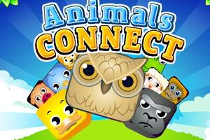 animals-connect